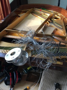 Bechstein String Tangle Specialist Piano Services
